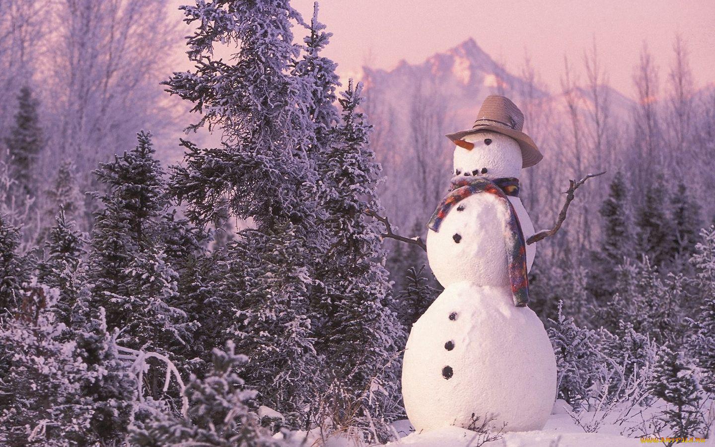 Обои на рабочий стол страшный снеговик